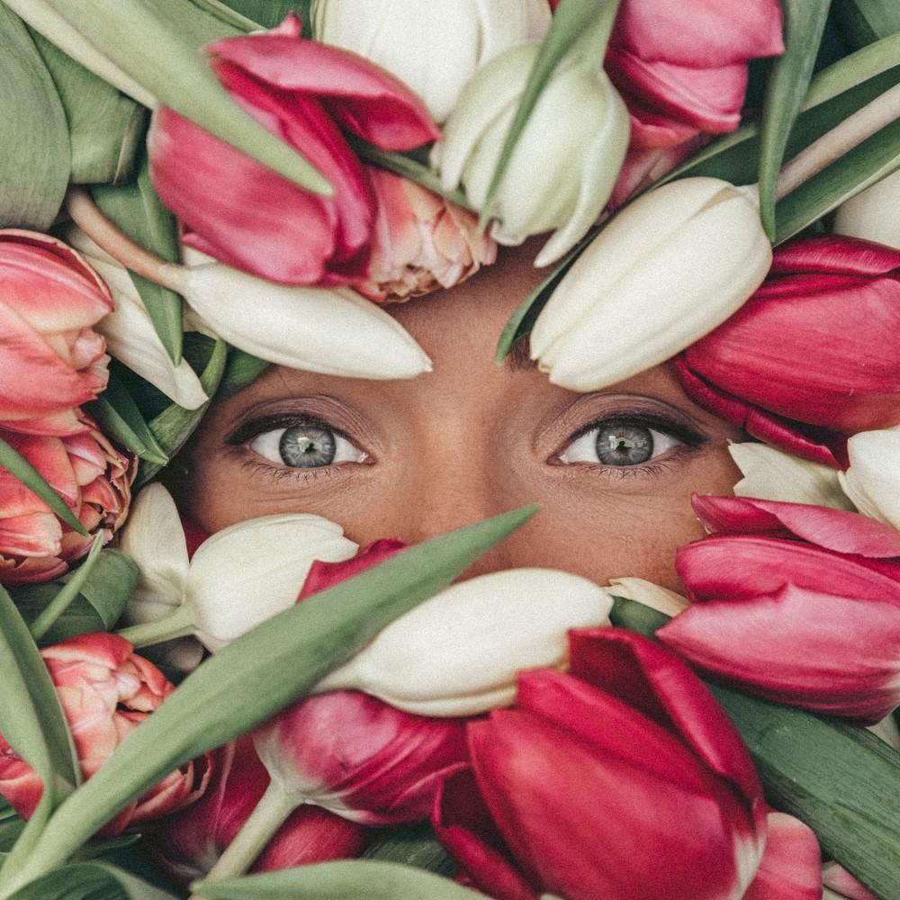 Роковое влечение. Голландские поля тюльпанов, притягивающие посетителей, опустеют раньше времени